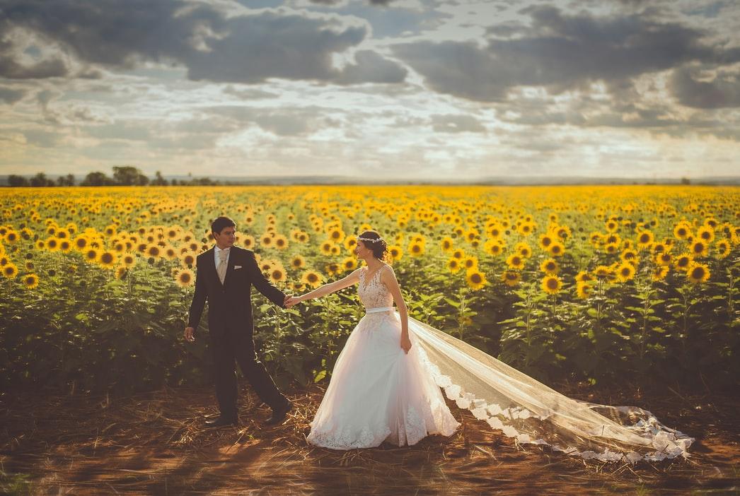 Solrosor och bröllopsfotografering